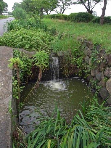 20100711平城宮疎水R0012400.jpg