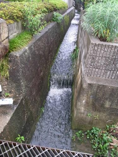 20100711疎水R0012457.jpg