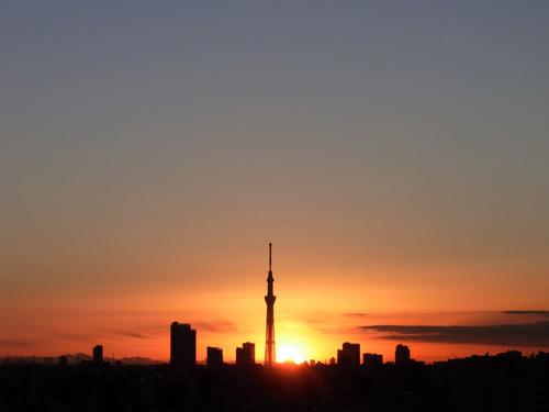 20111223夜明けR0120002.jpg