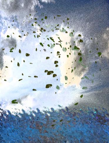 大樹雲枯葉.jpg