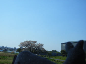 平城宮跡空R5216419.jpg