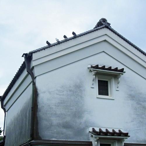薬師寺白壁R0153725.jpg
