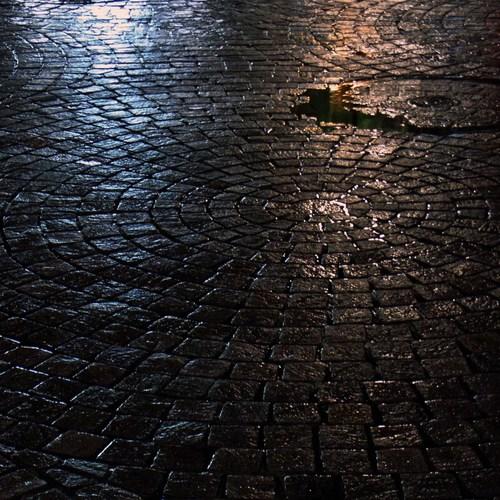 雨上がりR0116908.jpg