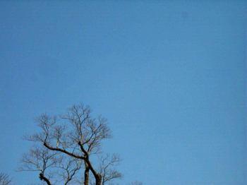 PV青空R5216208.jpg