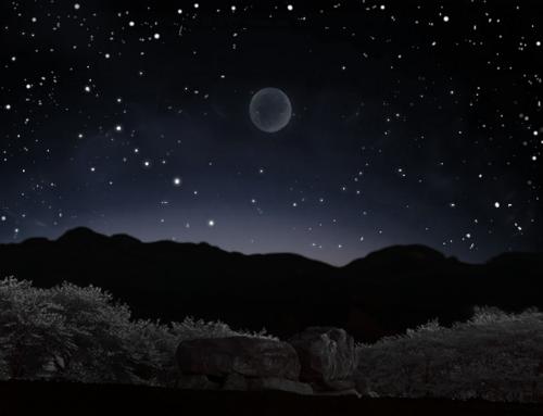 asukamur夜Picnic.png
