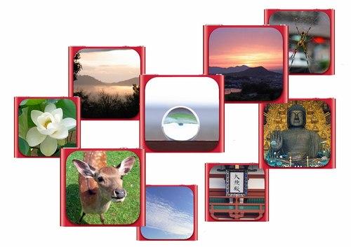 nano8画像集.jpg