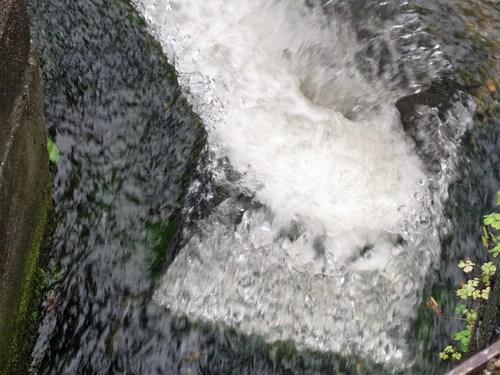 20100711疎水R0012459.jpg