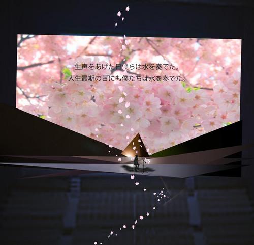なら会館ソメイヨシノステージ花びら.jpg