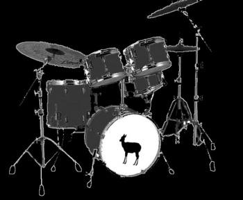ドラムしょうこ.jpg