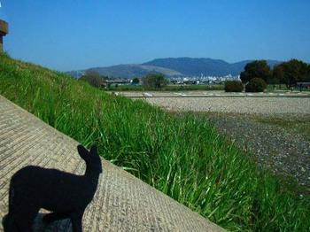 平城宮跡から若草山.jpg