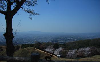 若草山から平城宮跡を見るR5216305.jpg