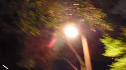 蛍騒動R0153320.jpg