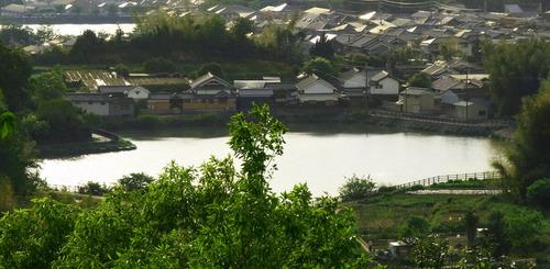 JT明日香村RIMG1051.jpg