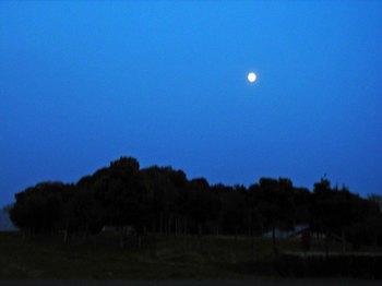 PV満月.jpg