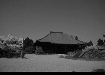 PV西大寺本堂モノR5216147.jpg